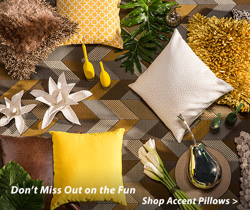 Don't Miss Out on the Fun Shop Accent Pillows